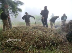 elaborando pila de compost tradicional