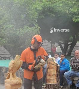 Exhibición motosierra