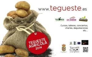 Tegueste Agrícola 2014
