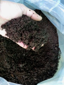 Humus de lombriz o vermicompost